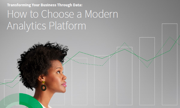 Transforming Your Business Through Data
